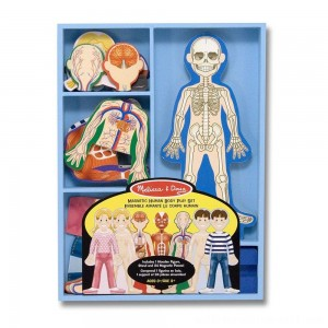 Melissa & Doug Magnetic Human Body Anatomy Play Set and Storage Tray - 24pc - Sale